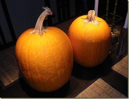 Turning Into A Pumpkin Or A Turkey Dc Rainmaker