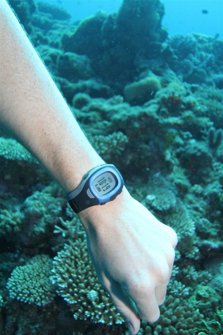 Garmin FR-60 while scuba diving