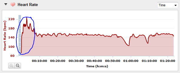 Heart Rate Monitor Graph Spikes