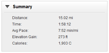 Garmin Connect Summary Page