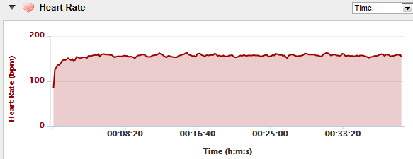 Garmin Connect HR Graph