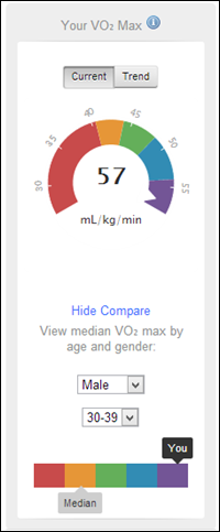 Garmin Connect Dashboard VO2Max