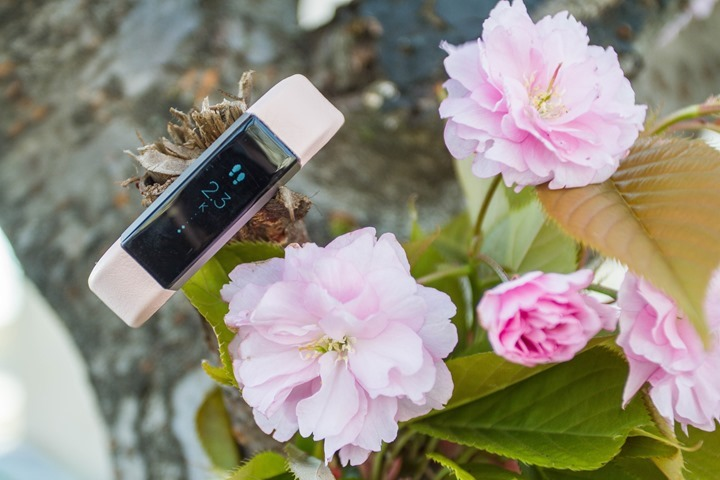 Fitbit-Alta-Pink-Band-Flowers