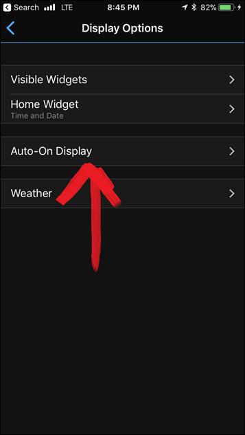Vivosport-Display-Options